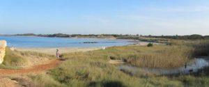 natuurpark aan zee