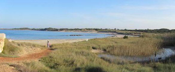 natuurgebied Torre Guaceto duinen strand en zeewater