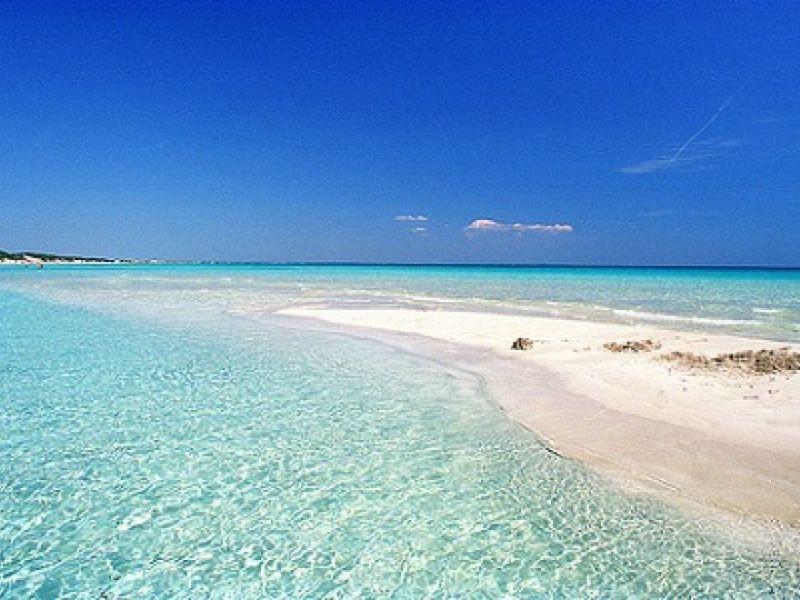 strand van punta prosciuto wiit zand en azuurblauw water tegen een blauwe hemel