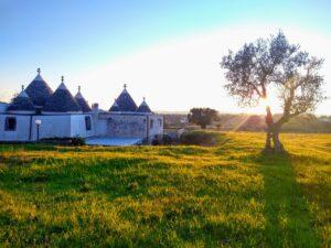 trullo's grasland en invallend zonnelicht